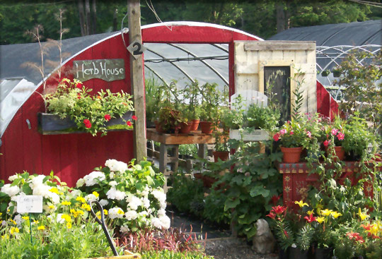New Hampshire herb house