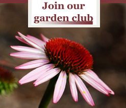 Join our Garden Club